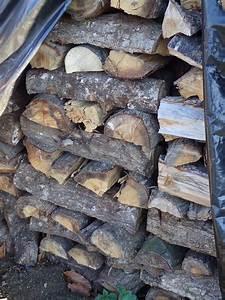 Bois De Chauffage 35 : bois de chauffage occasion en bretagne annonces achat et ~ Dallasstarsshop.com Idées de Décoration