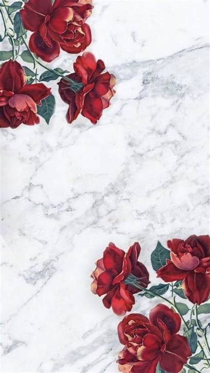 Marble Roses Rose Heart Hearts