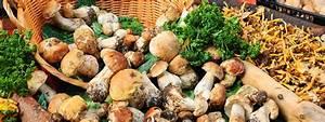 Shiitake Pilze Braten : pilze richtig zubereiten so geht 39 s ~ Watch28wear.com Haus und Dekorationen