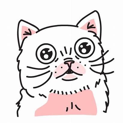 Stickers Cat Mobile Illustration Sticker Gifs Line