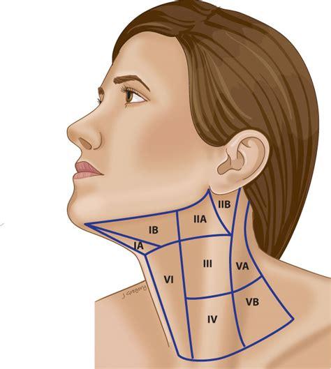 head  neck tumors finger lakes ent skin oncology