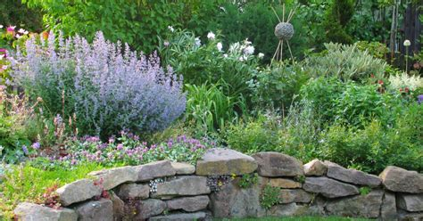 Trockenmauern Für Den Garten by Trockenmauern Planen Anlegen Und Bepflanzen Mein