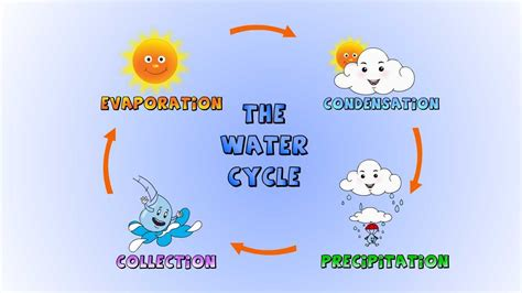water cycle preschool the water cycle diagrams diagram site 254