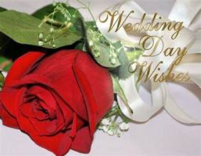 wedding day wishes wedding wishes and messages 365greetings