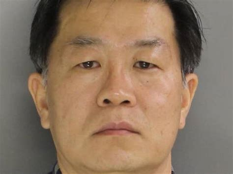 newtown square dentist hit  felonies  insurance