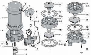 Sta Rite Ms Series Vertical Deep Well Jet Pump Repair Parts 1
