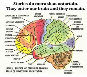Brain Map 15