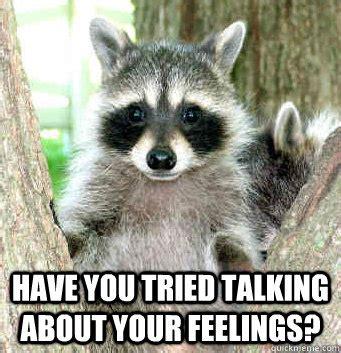 Raccoon Meme - raccoon meme google search grey gardens pinterest raccoons