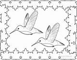 Hummingbird Coloring Pages Printable Birds Cool2bkids Hummingbirds Template Adult Getdrawings Cartoon Getcoloringpages Templates Drawing Throated Ruby sketch template