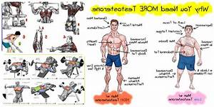 Ultimate Guide  Testosterone Booster In Japan  Coupon Code