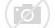 Rhino Entertainment - Wikipedia