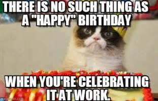 happy birthday meme cat happy birthday meme search i wish you