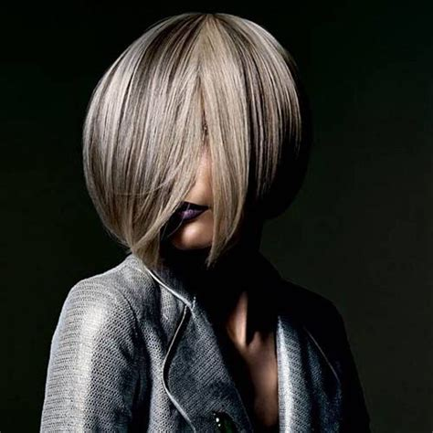 fade haircut 25 best going grey images on grey hair egg 3967