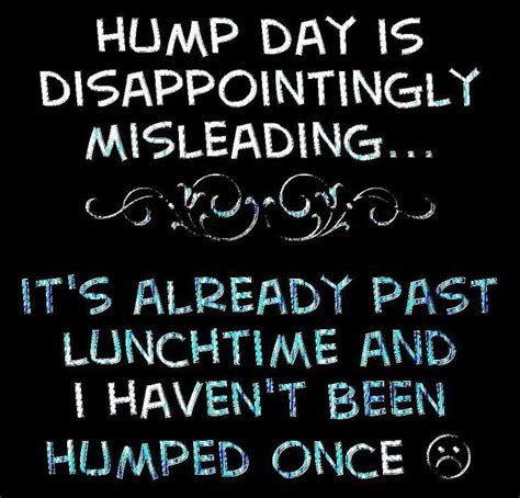 Hump Day Meme Dirty - hump day pictures photos and images for facebook tumblr pinterest and twitter