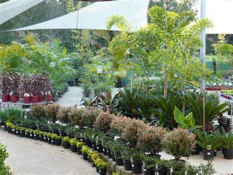 garden centre and nursery gt coast queensland