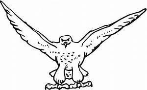 Hawk & Falcon Coloring Pages for Kids - Preschool and ...
