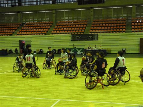 japan womens national wheelchair basketball team wikipedia