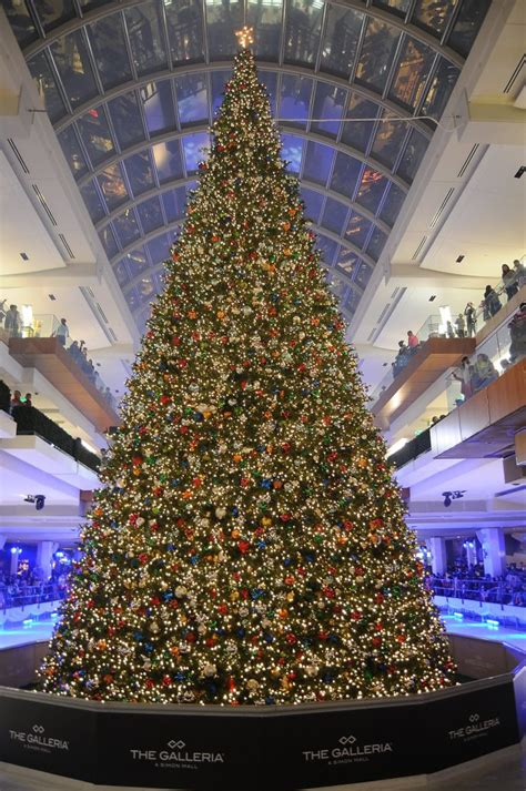 thabksgiving tree lighting housron a galleria s tree lighting lures a reality tv and requires