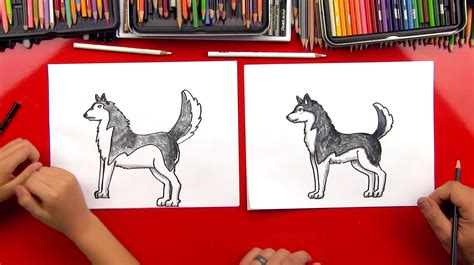 draw  realistic husky art  kids hub
