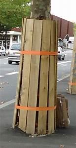 Protection Sol Pour Travaux : le blogue jardin lors de travaux prot geons le tronc des arbres ~ Melissatoandfro.com Idées de Décoration