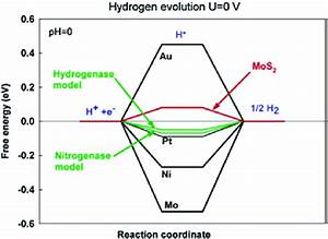 Calculated Free Energy Diagram For Hydrogen Evolution