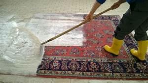 Hochflor Teppich Reinigen Tricks : teppich selbst reinigen haus mbel teppich reinigen preis ~ Lizthompson.info Haus und Dekorationen