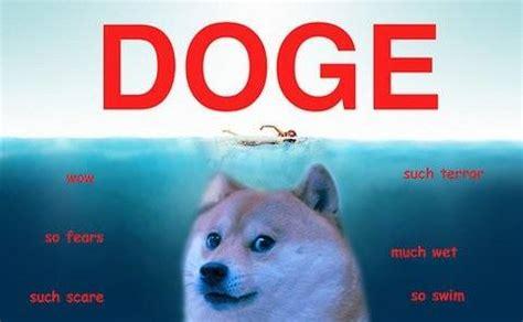 Lost Doge Meme - lost doge meme original