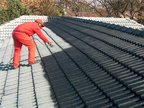 Roof Tile How To Paint A Roof Tile