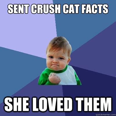 Cat Facts Meme - sent crush cat facts she loved them success kid quickmeme