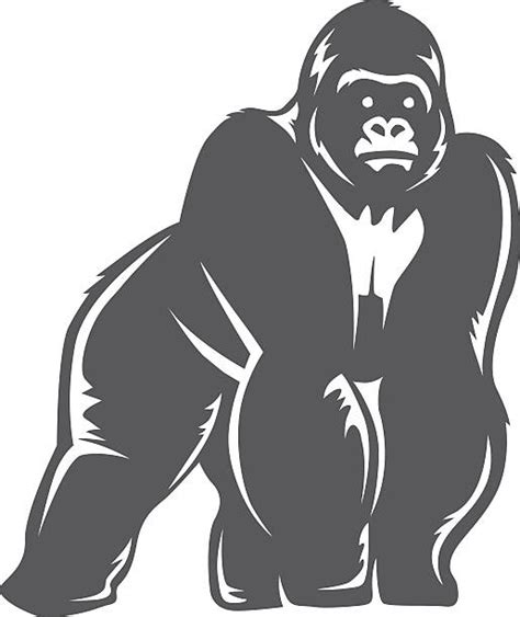 ape clipart royalty free gorilla clip vector images