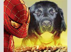 Hunde Homepage Lustige Fotomontagen Bilder