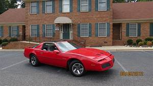 1984 Pontiac Firebird - Exterior Pictures