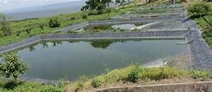 Picture Of The Oxidation Ponds Of The Hawassa University Referral Hospital