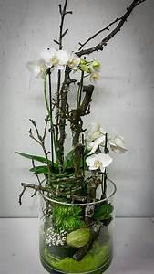 Orchideen Im Glas : ein google profil f r die blumenm nche deko blumen ~ A.2002-acura-tl-radio.info Haus und Dekorationen