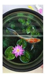 3D Goldfish Painting On Resin Layers   Resin art painting ...