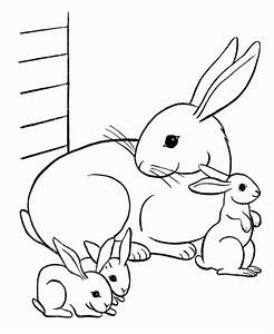 Cute Coloring Pages Of Baby Animals Coloring Home
