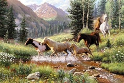 mountain thunder  mark keathley sold  item ebay