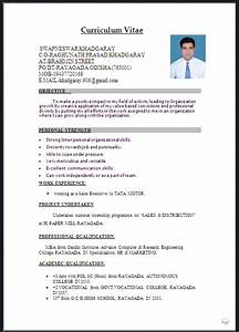 creative resume templates microsoft word free cv word document format