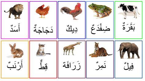 livre de cuisine gratuit pdf cartes vocabulaire animaux à imprimer arabe