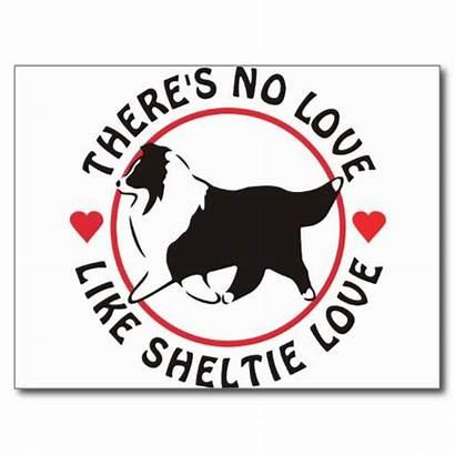 Akc Dog Sheepdog Shetland Breeds Breed