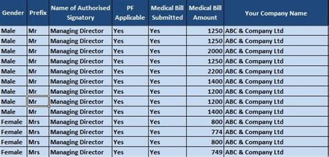 salary sheet  attendance register  single