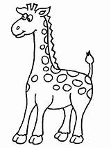 Giraffe Coloring Pages Printable Giraffes Printables Cute Animal sketch template