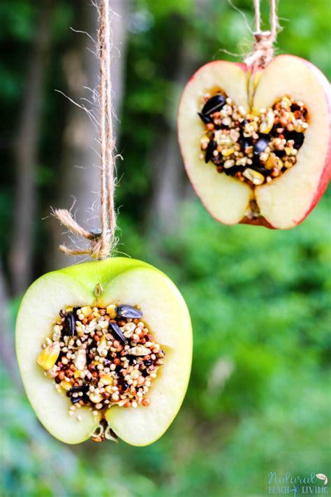 bird seed feeders how to make apple birdseed bird feeders everyone