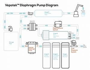 Vepotek Diaphragm Pump  Water Booster Pump  Ls  High