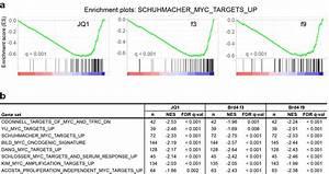 Gene set enrichment analysis (GSEA) of c-Myc target genes ...
