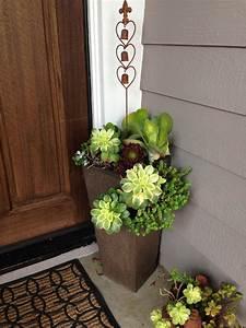 Succulent, Front, Door, Planters