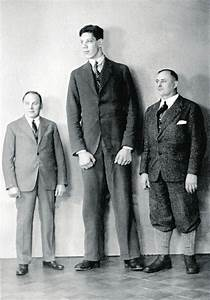 10 Tallest Men That Ever Lived And Their Stories