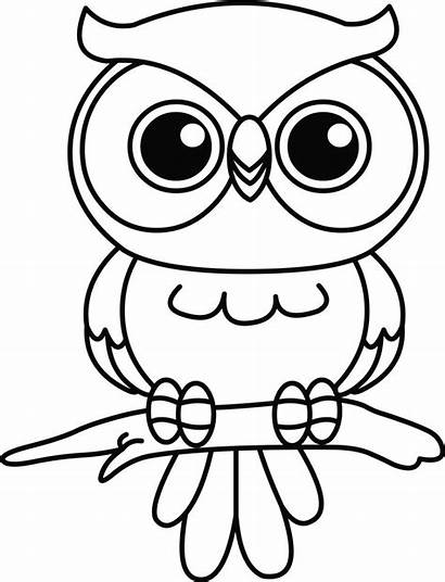 Owl Cartoon Drawing Outline Patterns Coloring Easy
