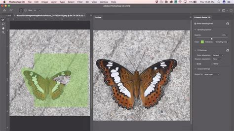Adobe Shows Off New Contentaware Fill Tool Coming To