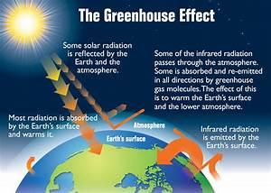 Climate Change Worksheet